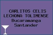CARLITOS CELIS LECHONA TOLIMENSE Bucaramanga Santander