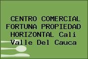 CENTRO COMERCIAL FORTUNA PROPIEDAD HORIZONTAL Cali Valle Del Cauca