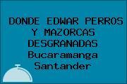 DONDE EDWAR PERROS Y MAZORCAS DESGRANADAS Bucaramanga Santander