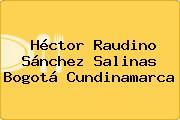 Héctor Raudino Sánchez Salinas Bogotá Cundinamarca