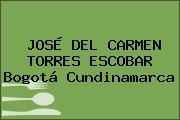 JOSÉ DEL CARMEN TORRES ESCOBAR Bogotá Cundinamarca