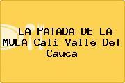 LA PATADA DE LA MULA Cali Valle Del Cauca