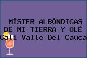 MÍSTER ALBÓNDIGAS DE MI TIERRA Y OLÉ Cali Valle Del Cauca