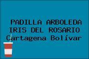 PADILLA ARBOLEDA IRIS DEL ROSARIO Cartagena Bolívar