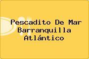 Pescadito De Mar Barranquilla Atlántico