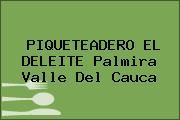 PIQUETEADERO EL DELEITE Palmira Valle Del Cauca