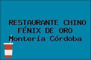 RESTAURANTE CHINO FÉNIX DE ORO Montería Córdoba