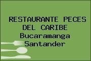 RESTAURANTE PECES DEL CARIBE Bucaramanga Santander