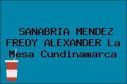SANABRIA MENDEZ FREDY ALEXANDER La Mesa Cundinamarca