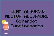 SEMA ALBORNOZ NESTOR ALEJANDRO Girardot Cundinamarca