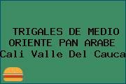 TRIGALES DE MEDIO ORIENTE PAN ARABE Cali Valle Del Cauca