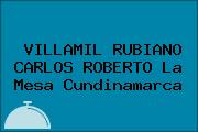 VILLAMIL RUBIANO CARLOS ROBERTO La Mesa Cundinamarca