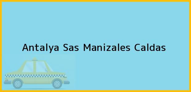 Teléfono, Dirección y otros datos de contacto para Antalya Sas, Manizales, Caldas, Colombia