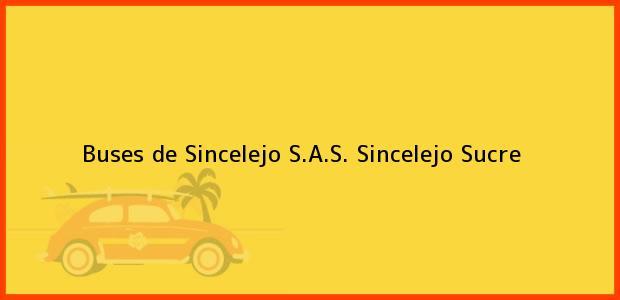 Teléfono, Dirección y otros datos de contacto para Buses de Sincelejo S.A.S., Sincelejo, Sucre, Colombia