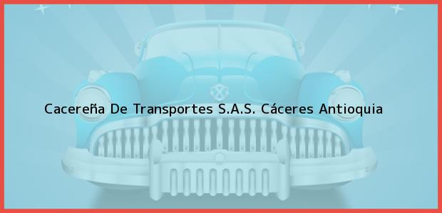Teléfono, Dirección y otros datos de contacto para Cacereña De Transportes S.A.S., Cáceres, Antioquia, Colombia