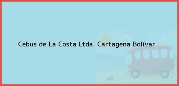 Teléfono, Dirección y otros datos de contacto para Cebus de La Costa Ltda., Cartagena, Bolívar, Colombia