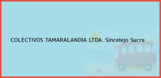Teléfono, Dirección y otros datos de contacto para COLECTIVOS TAMARALANDIA LTDA., Sincelejo, Sucre, Colombia