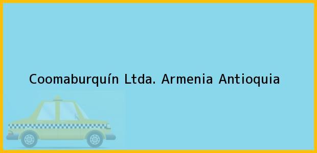Teléfono, Dirección y otros datos de contacto para Coomaburquín Ltda., Armenia, Antioquia, Colombia