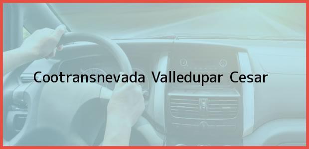 Teléfono, Dirección y otros datos de contacto para Cootransnevada, Valledupar, Cesar, Colombia