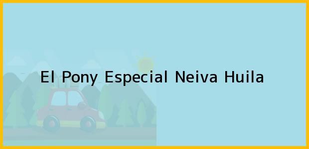 Teléfono, Dirección y otros datos de contacto para El Pony Especial, Neiva, Huila, Colombia