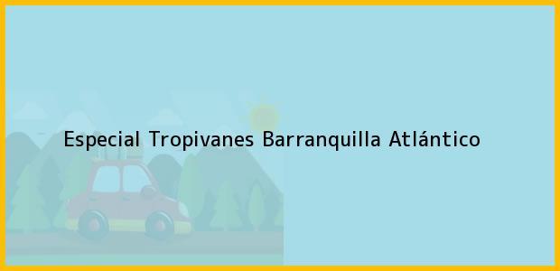 Teléfono, Dirección y otros datos de contacto para Especial Tropivanes, Barranquilla, Atlántico, Colombia