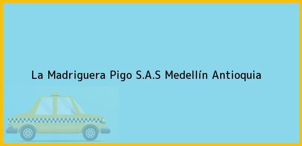 Teléfono, Dirección y otros datos de contacto para La Madriguera Pigo S.A.S, Medellín, Antioquia, Colombia