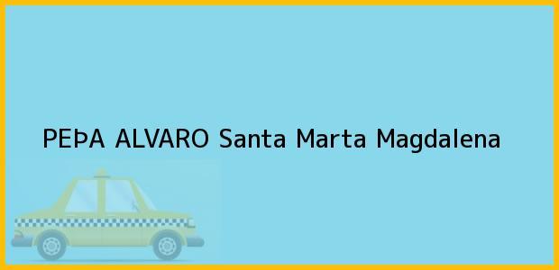 Teléfono, Dirección y otros datos de contacto para PEÞA ALVARO, Santa Marta, Magdalena, Colombia