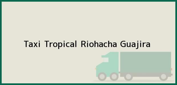 Teléfono, Dirección y otros datos de contacto para Taxi Tropical, Riohacha, Guajira, Colombia