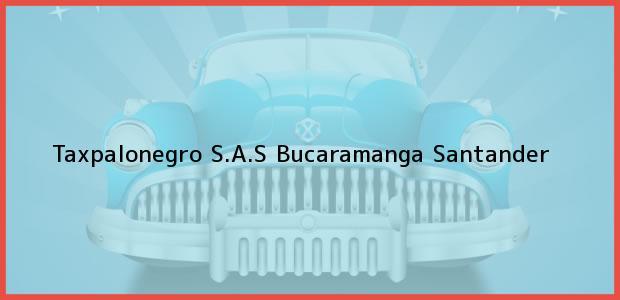 Teléfono, Dirección y otros datos de contacto para Taxpalonegro S.A.S, Bucaramanga, Santander, Colombia