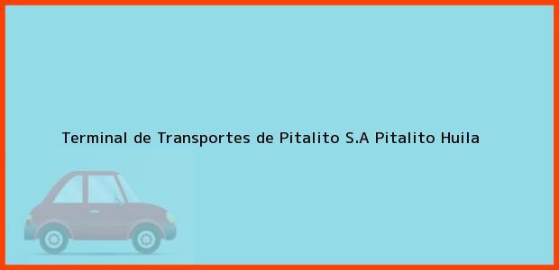 Teléfono, Dirección y otros datos de contacto para Terminal de Transportes de Pitalito S.A, Pitalito, Huila, Colombia
