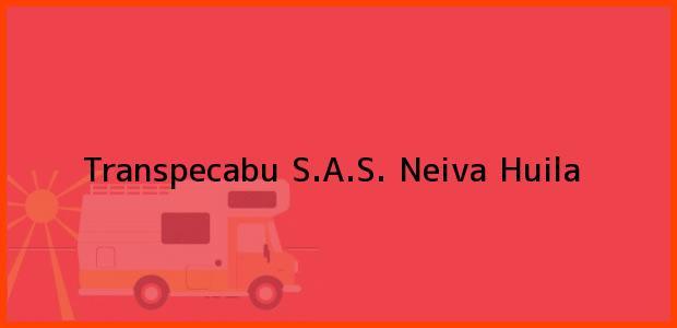 Teléfono, Dirección y otros datos de contacto para Transpecabu S.A.S., Neiva, Huila, Colombia