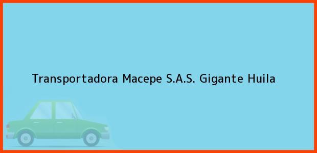 Teléfono, Dirección y otros datos de contacto para Transportadora Macepe S.A.S., Gigante, Huila, Colombia