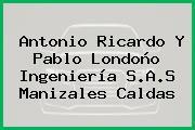 Antonio Ricardo Y Pablo Londoño Ingeniería S.A.S Manizales Caldas