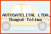 AUTOSATELITAL LTDA. Ibagué Tolima