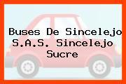 Buses De Sincelejo S.A.S. Sincelejo Sucre