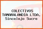 COLECTIVOS TAMARALANDIA LTDA. Sincelejo Sucre