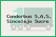 Condorbus S.A.S. Sincelejo Sucre