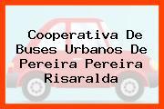 Cooperativa De Buses Urbanos De Pereira Pereira Risaralda