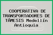 COOPERATIVA DE TRANSPORTADORES DE TÁMESIS Medellín Antioquia