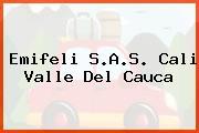 Emifeli S.A.S. Cali Valle Del Cauca