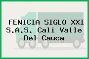 FENICIA SIGLO XXI S.A.S. Cali Valle Del Cauca