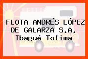 FLOTA ANDRÉS LÓPEZ DE GALARZA S.A. Ibagué Tolima