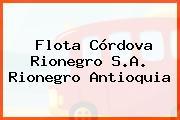 Flota Córdova Rionegro S.A. Rionegro Antioquia