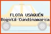 FLOTA USAQUÉN Bogotá Cundinamarca