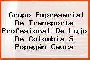 Grupo Empresarial De Transporte Profesional De Lujo De Colombia S Popayán Cauca