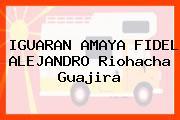 IGUARAN AMAYA FIDEL ALEJANDRO Riohacha Guajira