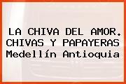 La Chiva Del Amor. Chivas Y Papayeras Medellín Antioquia
