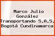 Marco Julio González Transportando S.A.S. Bogotá Cundinamarca