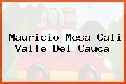 Mauricio Mesa Cali Valle Del Cauca