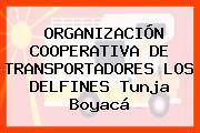 ORGANIZACIÓN COOPERATIVA DE TRANSPORTADORES LOS DELFINES Tunja Boyacá